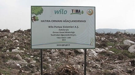 Wilo Memorial Forest