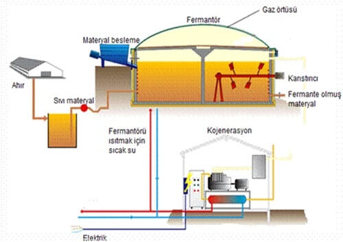 Biogas Production Process