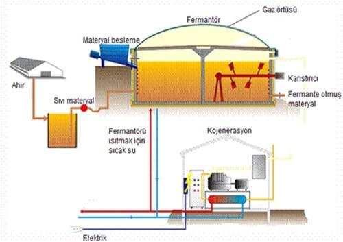 Biyogaz Üretim Prosesi