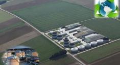 Dünya Biyogaz Üretimi