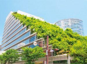 Bitkilendirilmiş Bina