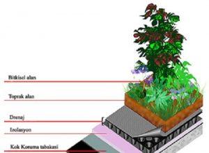 yeşil çatılarda bitki taşıyıcı tabaka