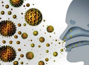 hava kökenli kültür edilebilir bakteri